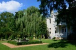 Willow Garden